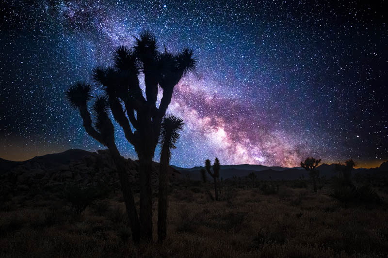 Milky Way Joshua Tree NP California