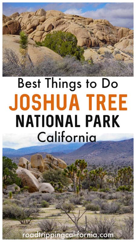 From hiking and photography to sunsets and rock climbing, discover the best things to do in Joshua Tree National Park in Southern California!