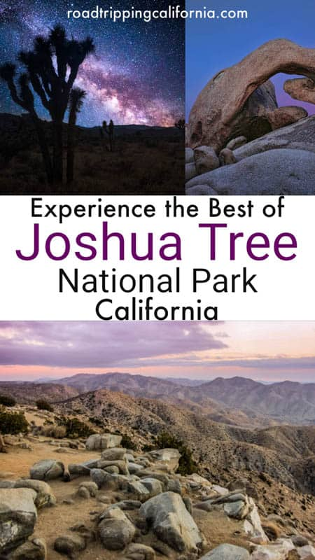 Planning a visit to Joshua Tree National Park? Discover the best hikes, plus other things to see and do including views, photography, climbing and more!
